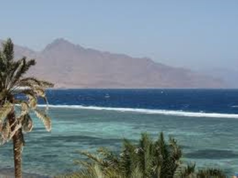 Day Tour from Dahab